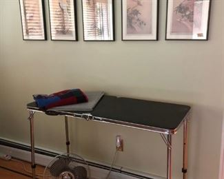 Grooming Table, Pictures