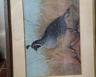 tbs vintage quail