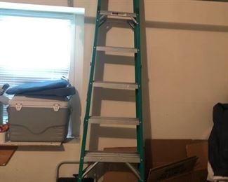 tall werner ladder