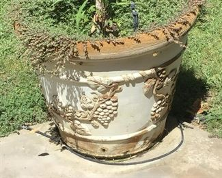 Outdoor Tuscan Pot with Plant