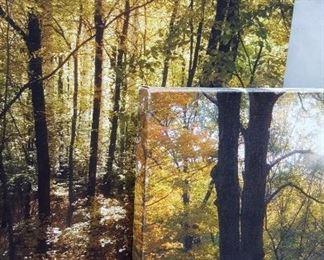 Photographs on canvas set of (2) large