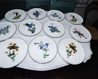 106. Twelve 12 Syracuse American Song Birds Plates