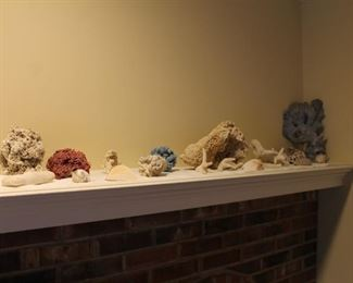 Coral and fish tank accessories