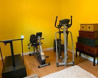 An E82 SportsArt Elliptical, Precor with new mother board, and Schwinn203