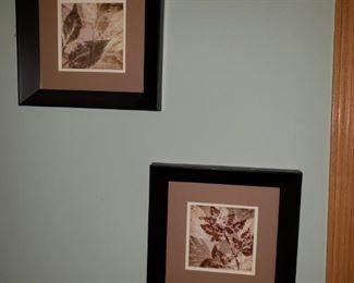 Framed floral prints