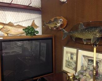 Mounted fish