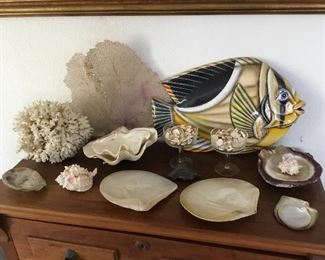 flat coral $35, other coral $15, oyster shells pair $15 other shells $2 to $8.