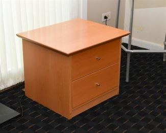 Contemporary / Modern Side Table with 2 Drawers
