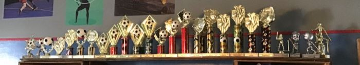 Youth Sports Awards