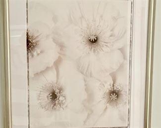 166. Close-Up of Flowers B&W Print