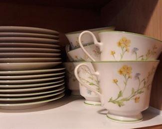 VES DINNER PLATES CUPS