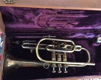 Ambassador Trumpet.
