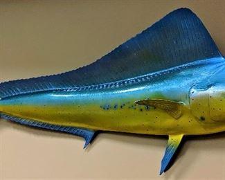 taxidermy fiberglass trophy fish mount