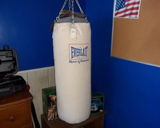 Everlast Punching Bag (attached to ceiling, will need to be removed)