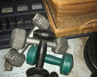 some of the weights
