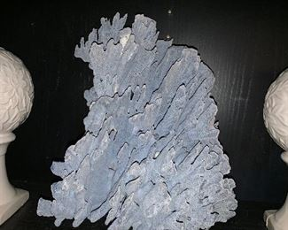 A HUGE piece of blue coral