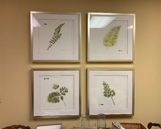 Set of 4 frames botanicals