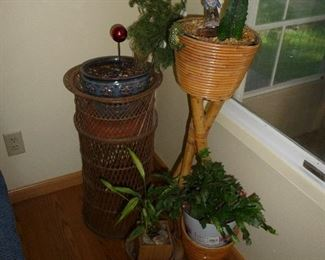 real plants / planters