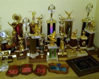 Birding and other trophies and awards.