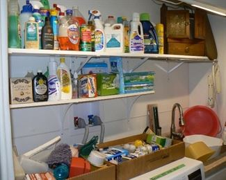 Household chemicals and items.