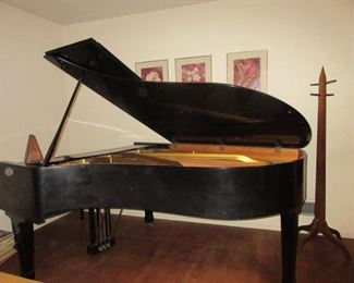 Bluthner German black laquer parlor grand piano