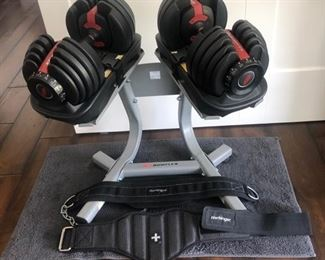 Bowflex Workout Equipment