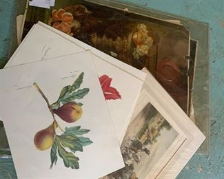 Antique prints and etchings