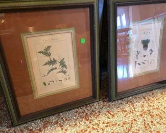 Botanicals, framed.