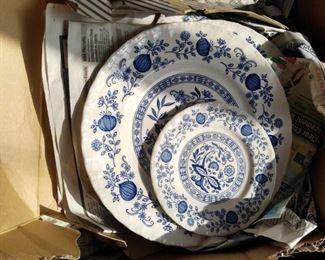 Blue Onion China