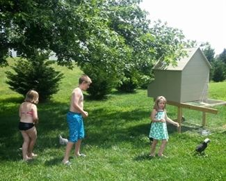 Full Picture of Chicken Coop on Wheels with Fenced Run Underneath and 2 Hatch Doors for Chicken Ladder and Gathering Eggs.  Very Cozy for Your Ladies!  Grandkids Not Included!  :)