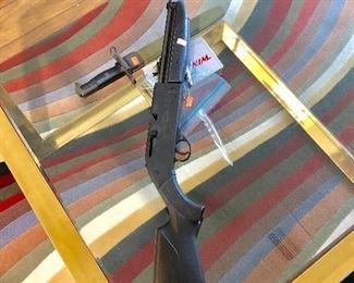 760 Pumpmaster Air Rifle
