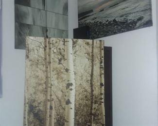 Price Cut - $10 ea. - Grey-toned canvas prints