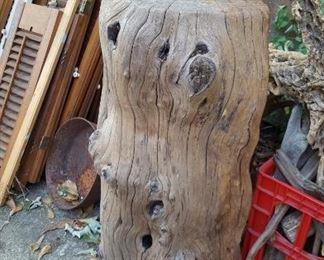 Large tree stump