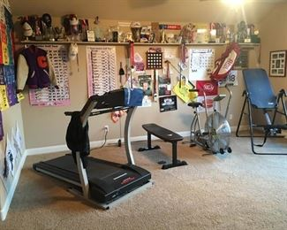 Treadmill, weight bench, and gravity chair.  Airdyne is not for sale.   Miscellaneous golf memorabilia.