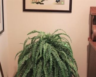 Potted Fern and Art