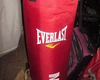 2 Everlast Punching Bags