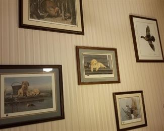 Michael Collins wildlife framed prints