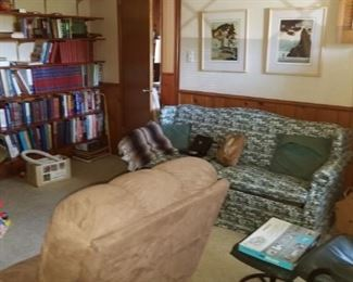 1950s couch, books, suede reclining chair