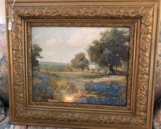 bluebonnets beautifully framed