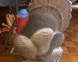 Turkey blow mold