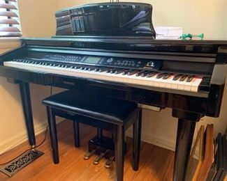 55. Suzuki Digital Grand Piano MDG-200 Micro