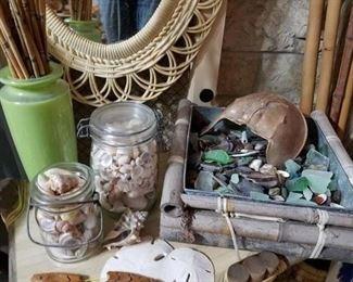 sea glass, shells, sand dollars, bamboo