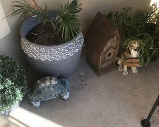 Outdoor plants/pottery