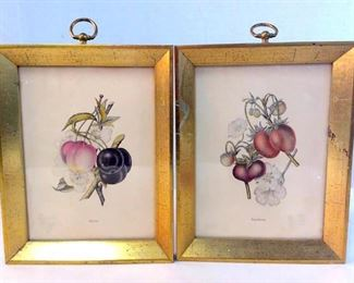 Possibly chrome lithographs, does not appear  to be digital prints, not inspected outside  of frame, Depicts Cherries and strawberries.  Framed in gold toned metallic painted wood  frames, measures approximately 9 1/2 in by 7 1/2 in to edges of frame. Some minor  discoloration to edges of prints, wear to  frame and backing paper. Art, botanical  illustrations, home decor, fine art.