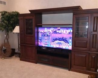 Entertainment Center and Sony Large Screen TV