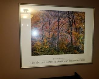Framed poster The Natuere Company/American Photographers