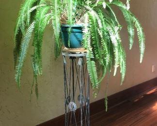 Fern. Plant  stand 45 tall.