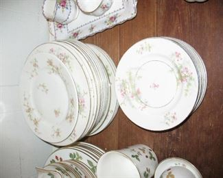 Group of  Haviland China in Apply Blossom Pattern.