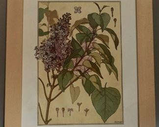 Lot 3 Lilac Botanical Framed Print $5 Starting Bid