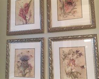 Set of four framed botanicals